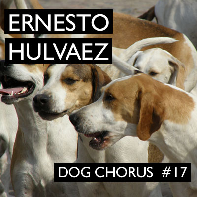 Dog Chorus 17